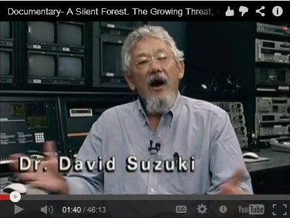 Documentary Film: A SILENT FOREST–The Growing Threat, Genetically Engineered Trees | Genetically Modified (GM) Trees | Scoop.it