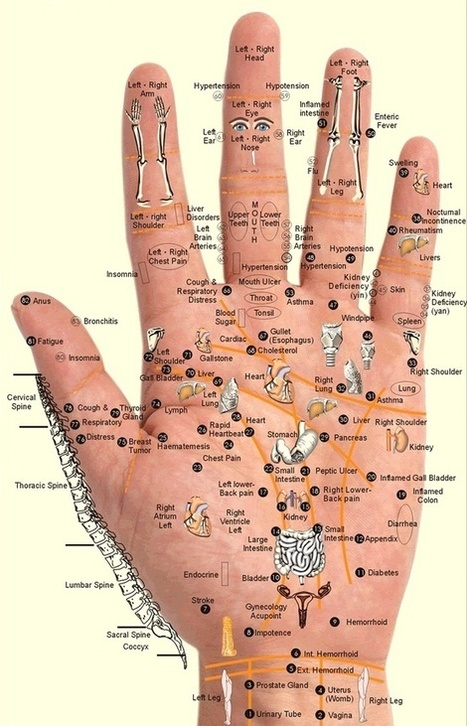 Acupressure Points for the Hands - PositiveMed | general everyday knowledge | Scoop.it
