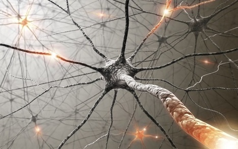 Train Your Brain To Let Go Of Habits – 10 Methods For Creating New Neural Pathways | Michelle Reynolds's | Scoop.it