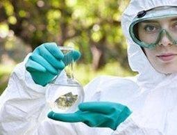 Diploma in Environmental Science | Perspectives on Health & Nursing | Scoop.it
