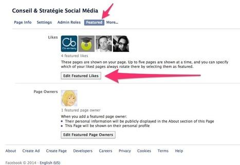 Conseils pour gérer votre Page Facebook   Blogs, CMS, réseaux sociaux et compagnie   Scoop.it