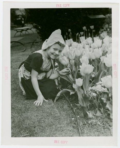 Perusing Collection New York Public Library for Dutch Flower Girl | Dutch Stuff | Scoop.it