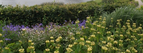 Your views on climate change and gardening | Gardening in the Northwest | Scoop.it