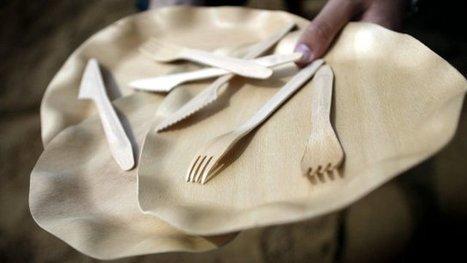 Pollution : pourquoi les députés ont voté l'interdiction de la vaisselle en plastique jetable | Toxique, soyons vigilant ! | Scoop.it