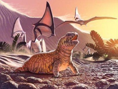 Le fossile d'un nouveau lézard qui nous oblige à réécrire leur histoire | Ecologie Animale | Scoop.it