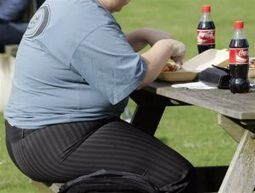 Study: Hefty tax on soda would reduce UK obesity - Sioux City Journal   Obesity   Scoop.it