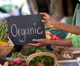 Helpful ways to better afford organic food on a tight family budget | Plant Based Nutrition | Scoop.it