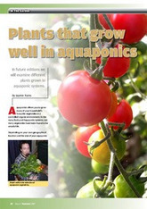 Links for more detailed information from around the world | Aquaponics Education | Scoop.it