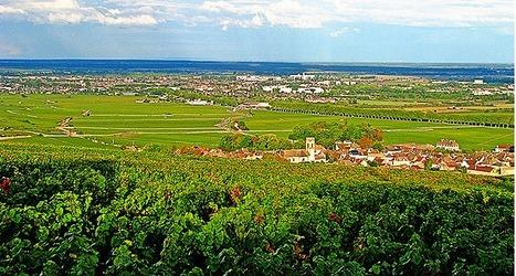 6 Villages of Burgundy   Burgundy Flavour   Scoop.it