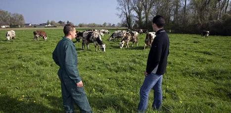 Élevage : France Conseil Élevage veut accompagner les éleveurs et leurs conseillers | Actualités de l'élevage | Scoop.it