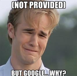 "How ""not provided"" affect PPC startegies | InnoMind Technologies | Internet Marketing | Scoop.it"