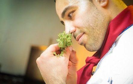 Šta kuvate danas? Najbolji recepti naših saradnika - Recepti i Kuvar online | Recepti i Kuvar | Scoop.it