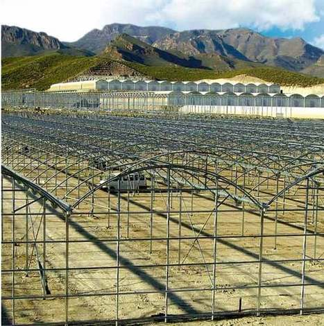 Welcome to APR Greenhouses & Technology | HORTOFRUTICOLA | Scoop.it
