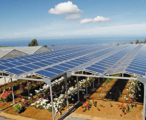 Fermes agri-solaires : agriculture et photovoltaïque cohabitent | En route pour la transition énergétique | Scoop.it