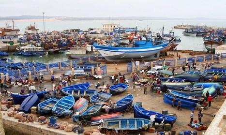 Excursion Essaouira - Journée complète - Morocco Trip Travel   Tourisme   Scoop.it