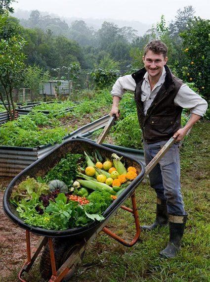 Permaculture | incredible edible info | Tilapia et jardin | Scoop.it