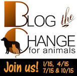 Bunny's Blog: October 15: Join Team BTC and Blog the Change for Animals | Pet News | Scoop.it