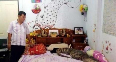 Thai Family Uses Crocodiles as Watchdogs to Fend Off Burglars | Strange days indeed... | Scoop.it