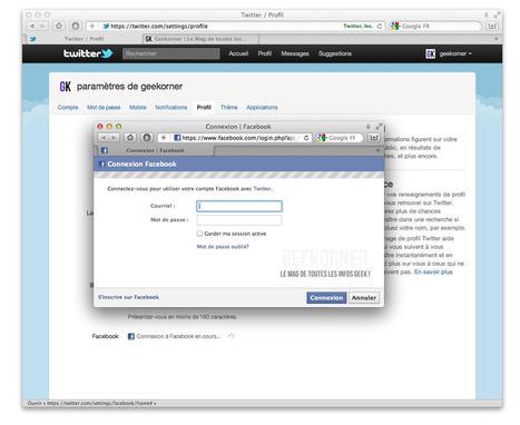Publier simultanément sur WordPress, Facebook et Twitter | François MAGNAN  Formateur Consultant | Scoop.it