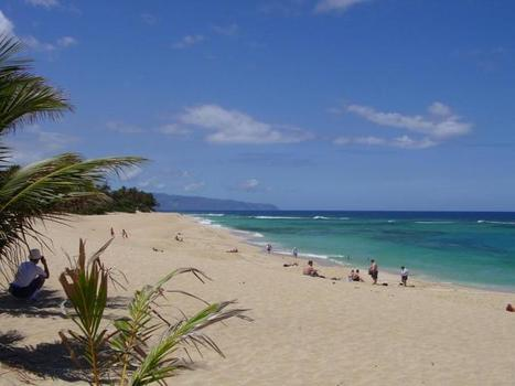 Hawaii's Secret  (and not so secret)Beaches | Critical thinking and writing | Scoop.it
