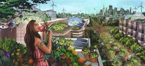 Je transforme mon habitation en réserve de Biodiversité | Facebook | Trames Vertes Urbaines | Scoop.it