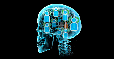 Online social network size is reflected in human brain structure | Psychology and Brain News | Scoop.it