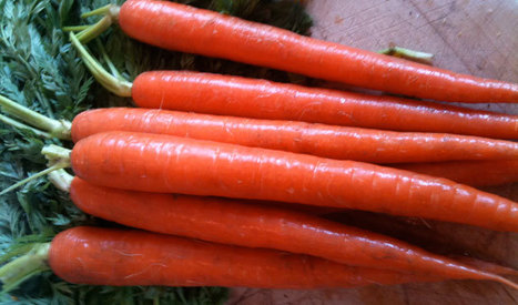 How to Store Vegetables & Fruit Without Plastic | Washington's Green Grocer | The Rambling Epicure | Scoop.it
