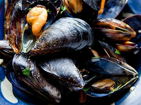 Marche Style Mussels | Le Marche and Food | Scoop.it