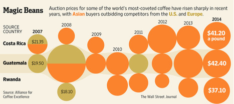 Coffee Prices Soar at Online Auctions | Coffee News | Scoop.it