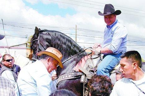 Los caballos de pura sangre, la debilidad de los patriotas ... - elPeriódico (Guatemala) | Caballo, Caballos | Scoop.it