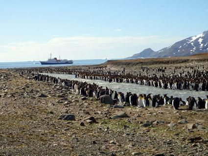 Wonderful Antarctica   Climate Change   Antarctica   Scoop.it