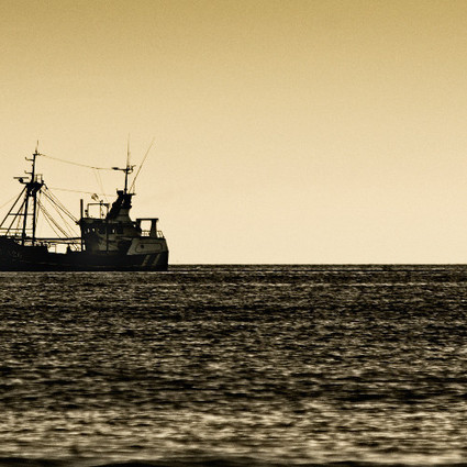 Deep Sea Fishing Threatens to Wipe Out a $150 Billion Carbon Sink | Sustain Our Earth | Scoop.it