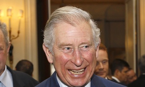 Prince Charles calls for the quality of hospital food to be a priority | Food issues | Scoop.it