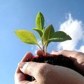 3 besoins psychologiques à la base de la motivation, du bien-être et de la performance | Sens&co | Scoop.it