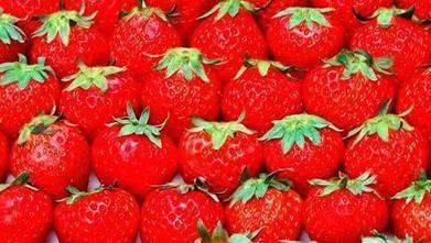 Conoce los cinco alimentos rojos que cuidan tu salud - Ciencia - 24horas   alimentos   Scoop.it