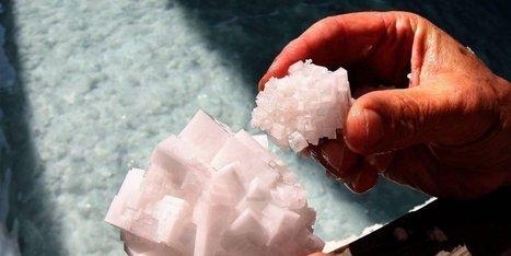 Le sel de Salies-de-Béarn obtient le label IGP et s'ouvre de nouveaux marchés | Agriculture en Pyrénées-Atlantiques | Scoop.it