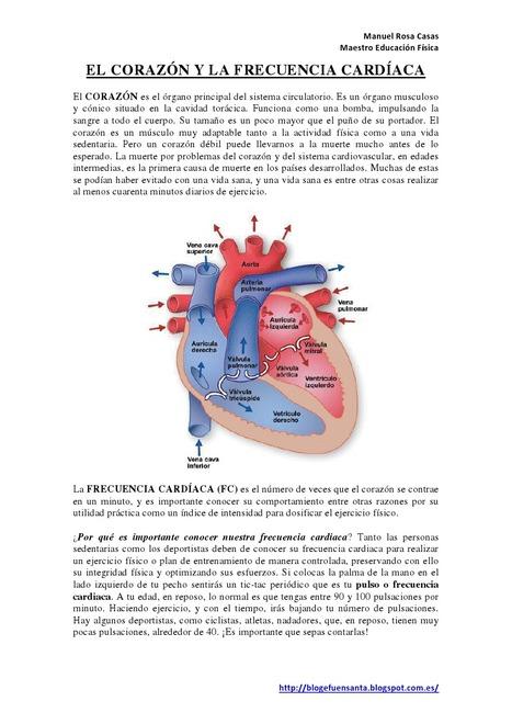 El corazón y la Frecuencia Cardíaca 6º | Leemos en Educación Física | Scoop.it