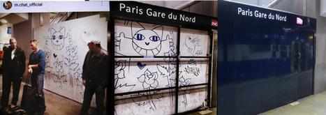 Monsieur Chat en prison?   Droit   Scoop.it