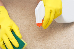 The leading carpet cleaning contractor - Michelangelo Enterprises. | Michelangelo Enterprises | Scoop.it
