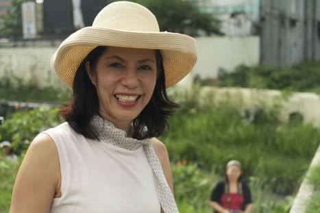 """'Gina Lopez, a """"Crusader,"""" Sets Philippines Water, Mining Safety on Unexpected New Course' @investorseurope 
