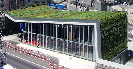Muro y cubierta vegetal en el metro de Lausanne : Jardines ... | Cultivos Hidropónicos | Scoop.it