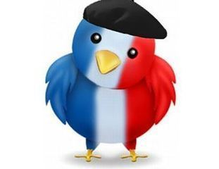 Qui sont les twittos français et que font-ils exactement ? | Brand content & marketing et usages numériques | Scoop.it