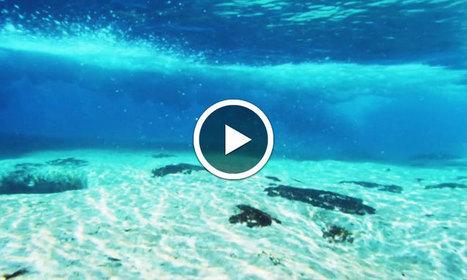 WATER, un court-métrage qui rend hommage aux océans à travers une jolie exploration sous-marine | video | Scoop.it