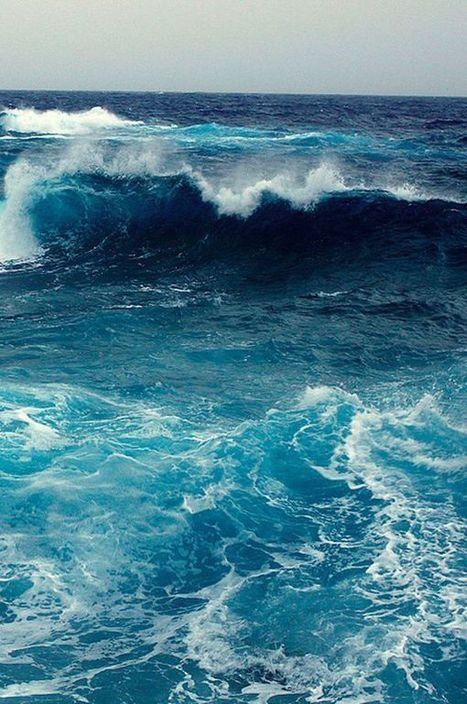 Plasma marin : bienfaits de l'eau de mer | Santé naturelle | Scoop.it