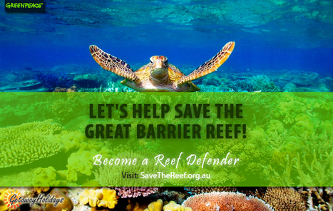 Save the Great Barrier Reef: Become a Reef Defender | Getaway Holidays Blog | Travel Guide, Tips and Trivia | Scoop.it