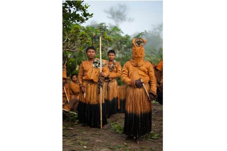 Guainía le apuesta a la medicina tradicional | Lenguas nativas de Colombia | Scoop.it