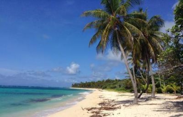 Marie-Galante, terre de rhum et de blues | Mondomix | Kiosque du monde : Amériques | Scoop.it