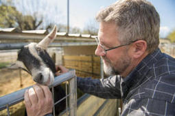 Goats' milk with antimicrobial lysozyme speeds recovery from diarrhea | Food & Health 311 | Scoop.it