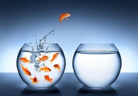 15 modi per perdere Followers su Twitter | Marketing e Social Media | Scoop.it