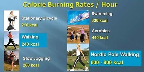 insideoutphysio | Health Benefits of Nordic Pole Walking | Expat Life In Japan: | Scoop.it
